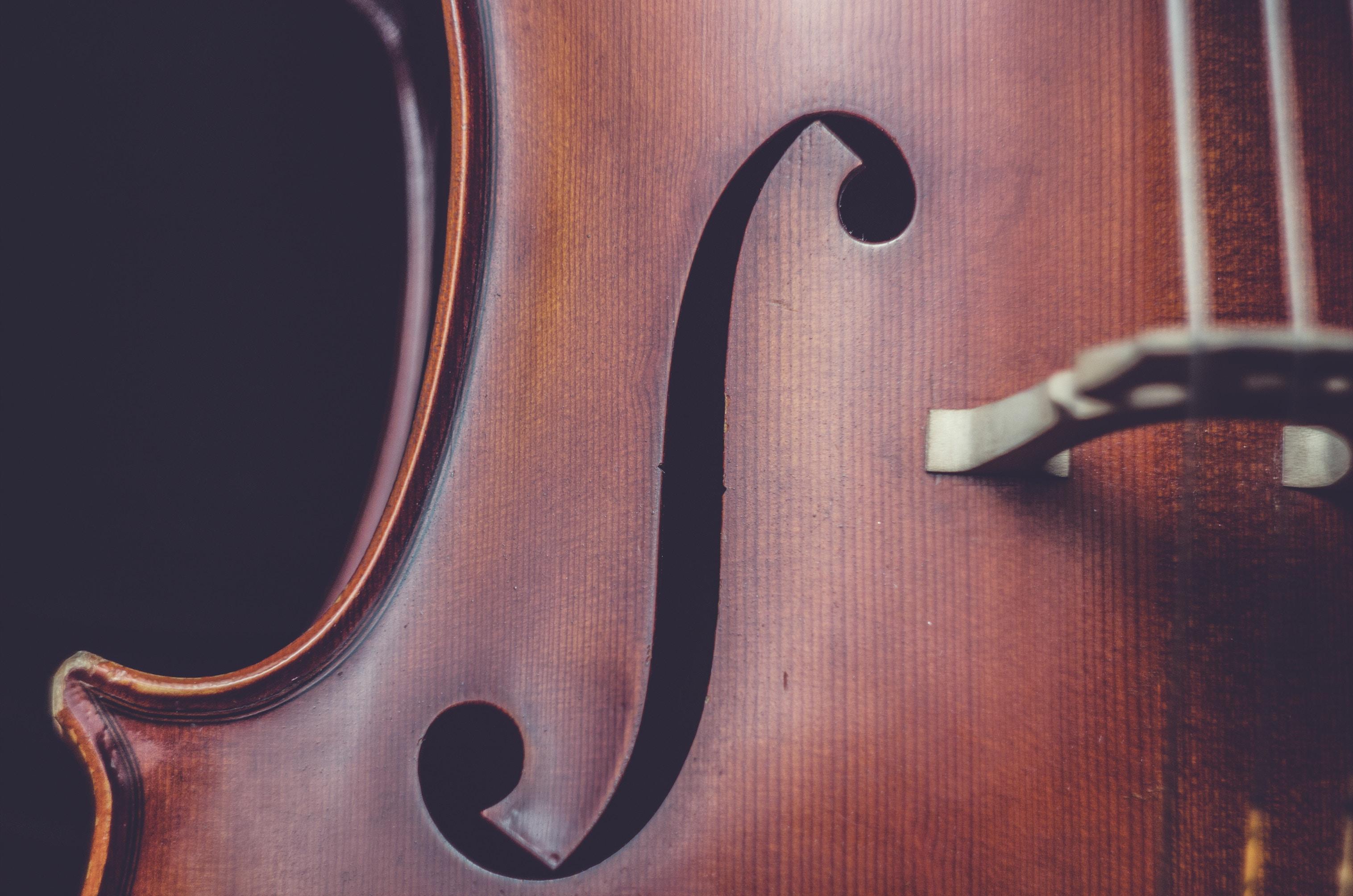 Bonus Stradivari e Bonus Cultura